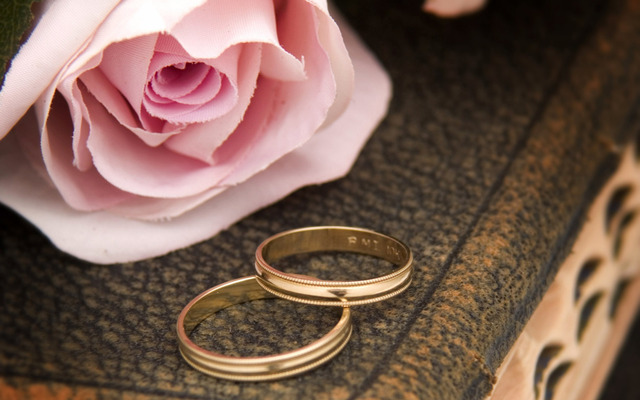 Wedding Rings And Red Roses  canstockphotocom